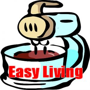 mini food processor reviews