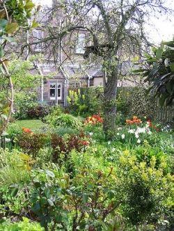 choosing the right garden plants