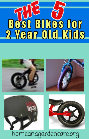 Best Bike for 2 Year Old