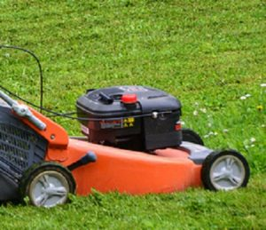 adjust height of grass being cut in spring